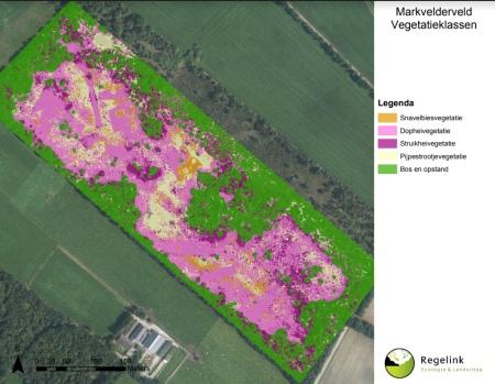 aeret staatbosbeheer leefgebied gentiaanblauwtje klokjesgentiaan drone