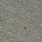 haas weidevogeldrone aeret dronexpert gis gps coordinaten locatie